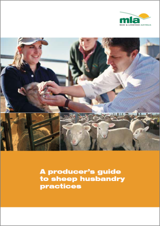 a_producers_guide_to_sheep_husbandry_practices